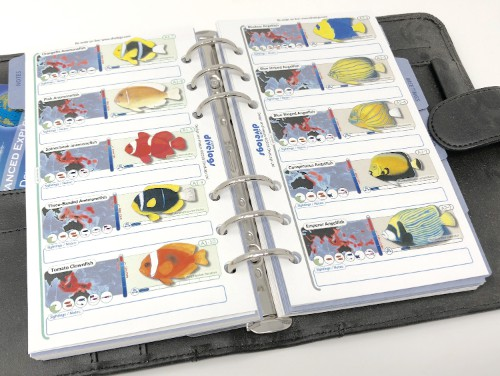We have a very compact version for personal organisers or small 6-ring binders