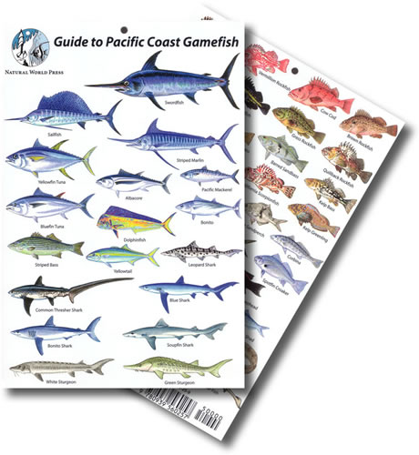 Pacific Coast Game fish ID Card