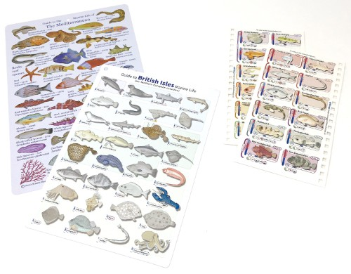 The waterproof refills are a compact alternative to our fish id cards and slates, with a lot of extra features.